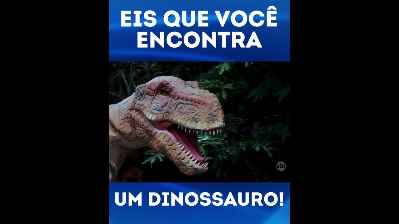 Pegadinha no parque, nunca roube um ovo de dinossauro hahaha