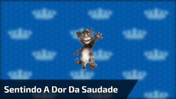 Gatinho Vai Te Ensinar Uma Técnica Para Seus Amigos Sentirem A Dor Da Saudade!