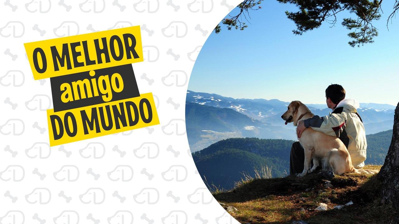 04 de Outubro é o dia dos Cachorros