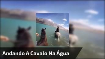 Andando A Cavalo Na Água, Olha Que Lugar Incrível, A Natureza É Linda!