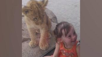 Animais De Zoológicos Se 'Comunicando' Com Crianças, Confira!