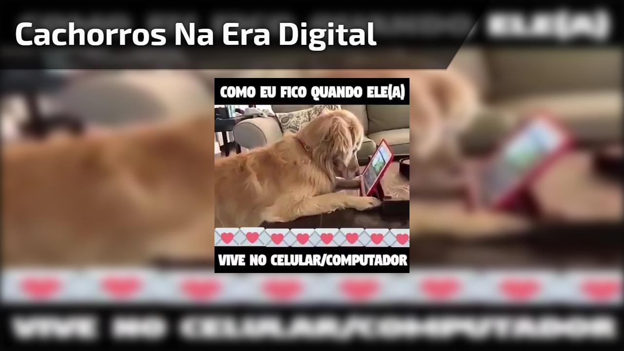 Até os cachorros estão passando pela era digital, confira!