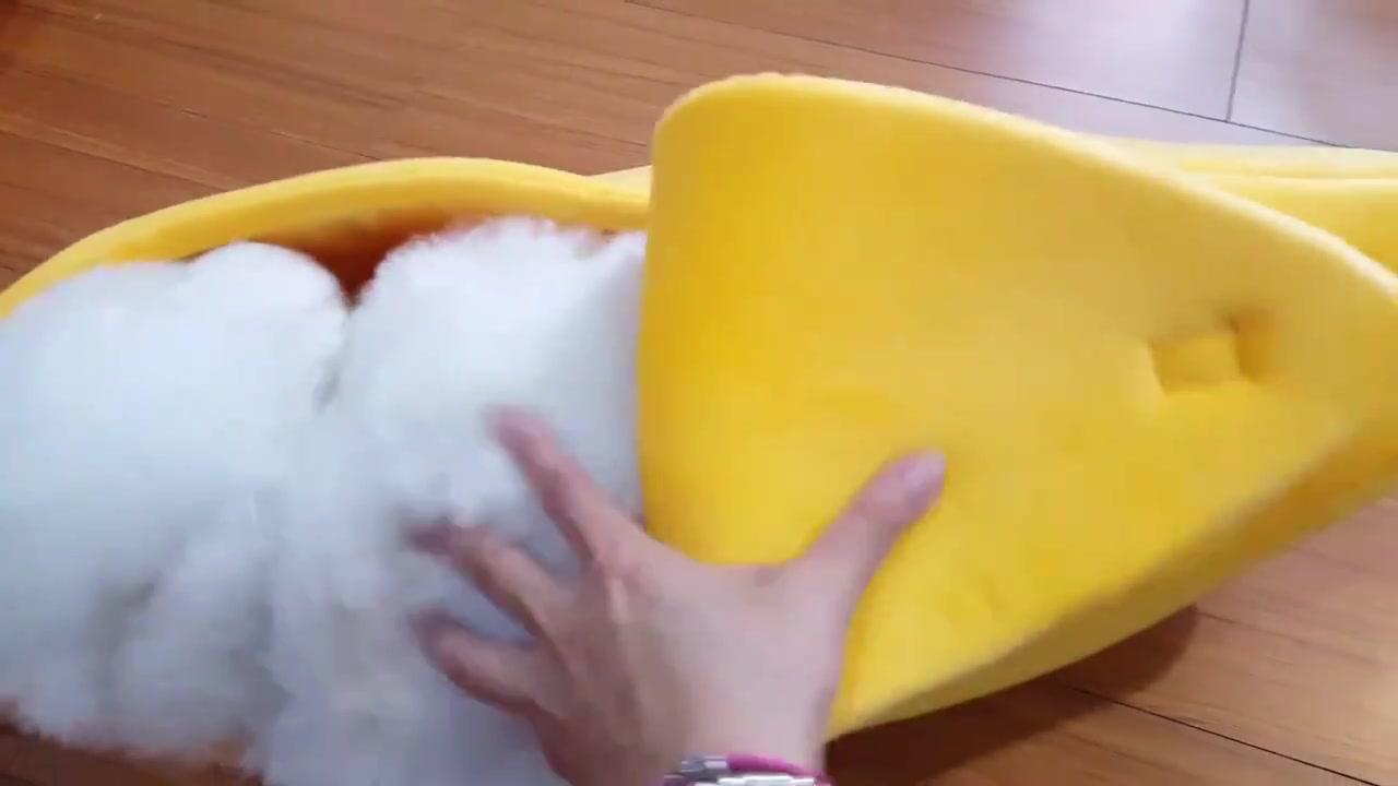 Banana recheada de cachorro