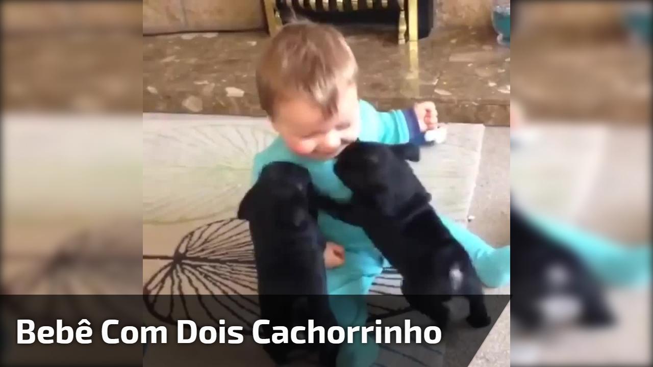Bebê com dois cachorrinho