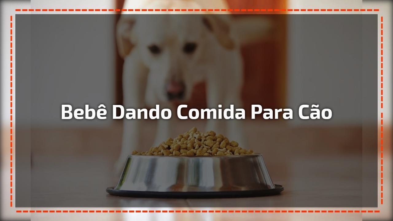 Bebê dando comida para cão