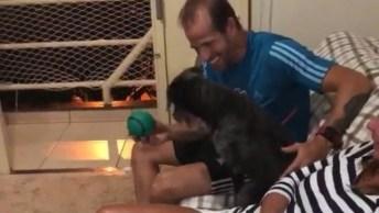 Cachorra Adotada Super Feliz Em Sua Nova Vida, Que Cena Linda!