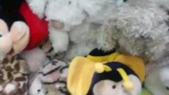 Cachorrinha Escondida No Meio Dos Bichinhos De Pelúcia, Olha Só A Carinha Dela!