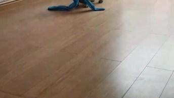 Cachorrinho Brincando Com A Mamãe Humana. Eles Adoram Uma Bagunça!
