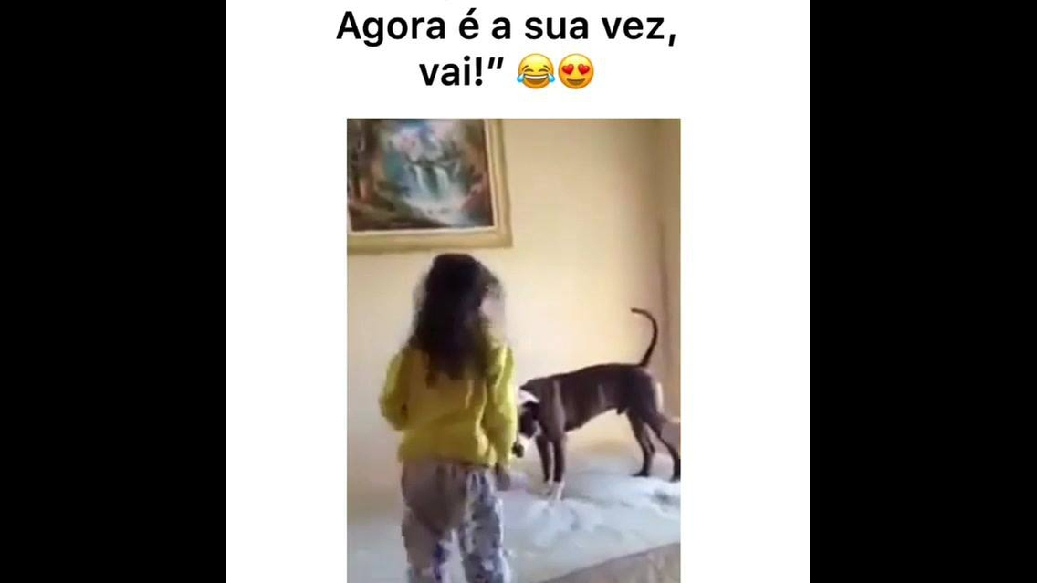 Cachorrinho brincando de pular em cima da cama com suas amiguinhas