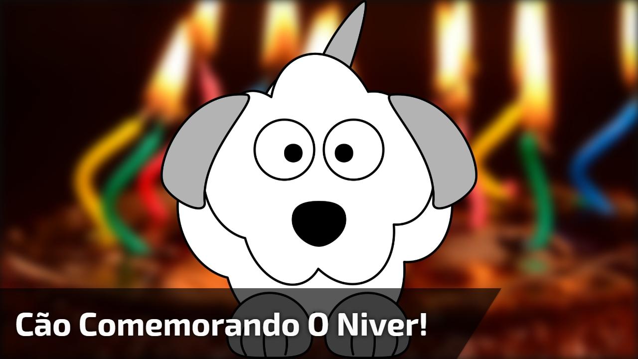 Cão comemorando o niver!