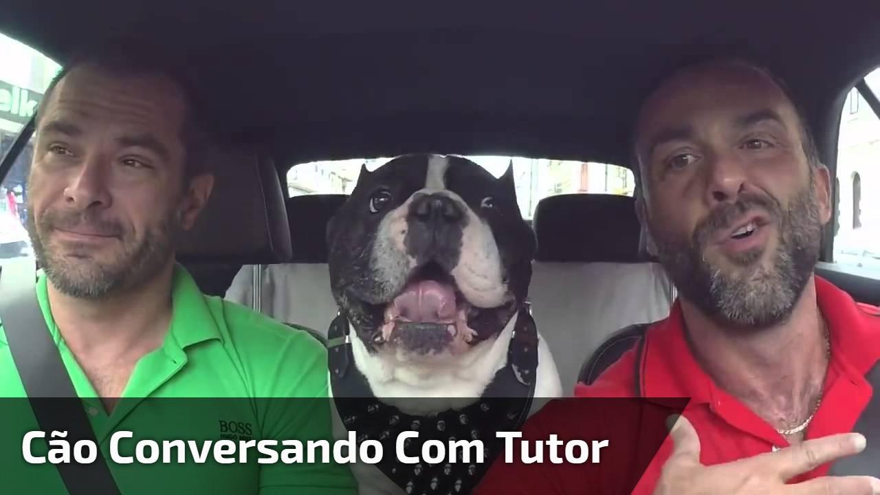 Cão conversando com tutor