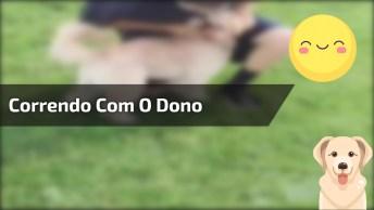 Cachorrinho Correndo Com Seu Dono, Veja O Tombo Dele, Tadinho!