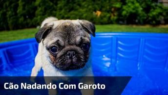 Cachorrinho Nadando Com Garotinho, Olha Só Que Fofura Ele Pulando!