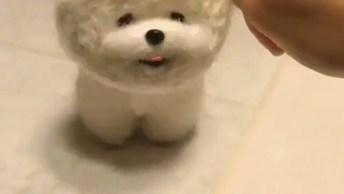 Cachorrinho Que Mais Parece Um Ursinho De Pelúcia, Que Fofura!