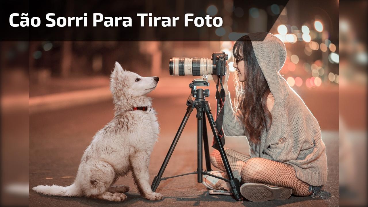 Cão sorri para tirar foto