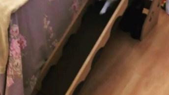 Cachorrinho Usando A Rampa Para Descer Da Cama, Muito Bom!