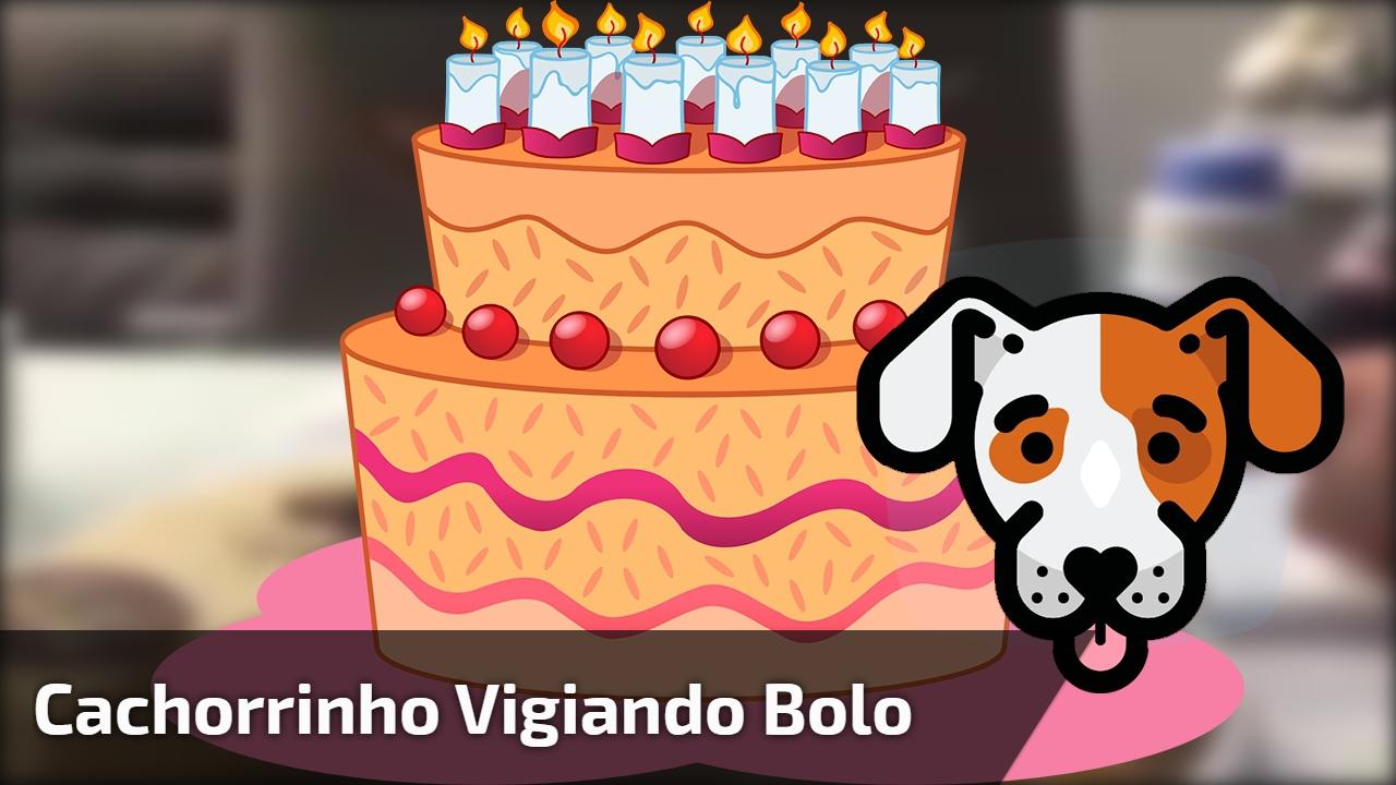 Cachorrinho vigiando bolo