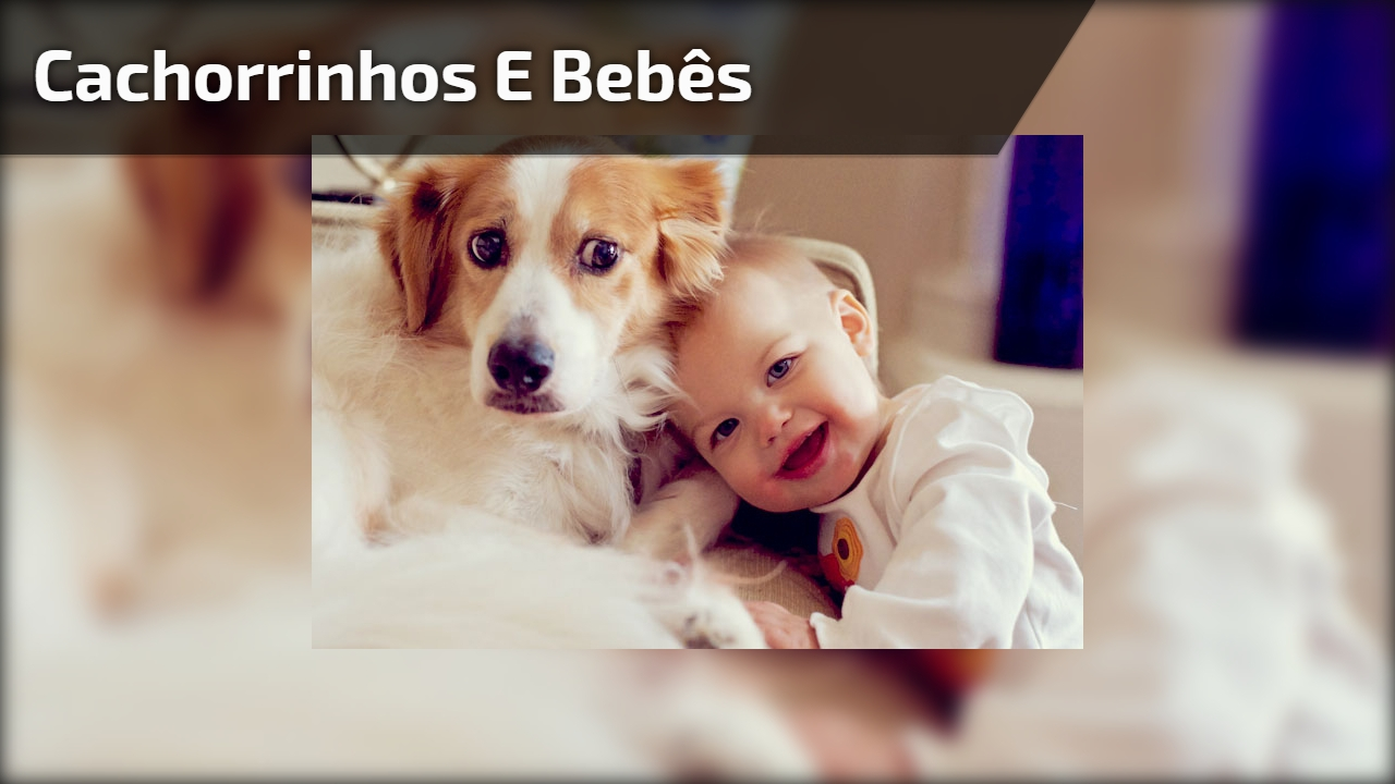 Cachorrinhos e bebês, uma combinação pra la de fofinha, olha só estas fofuras!