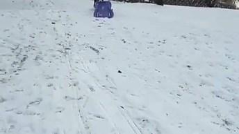 Cachorro Adora Brincar Na Neve, Ele Sobe Com Sua Prancha E Desce Escorregando!
