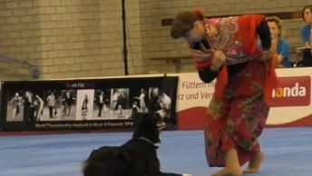 Cachorro Border Colie Dançando Com Mulher, Um Vídeo Incrível!