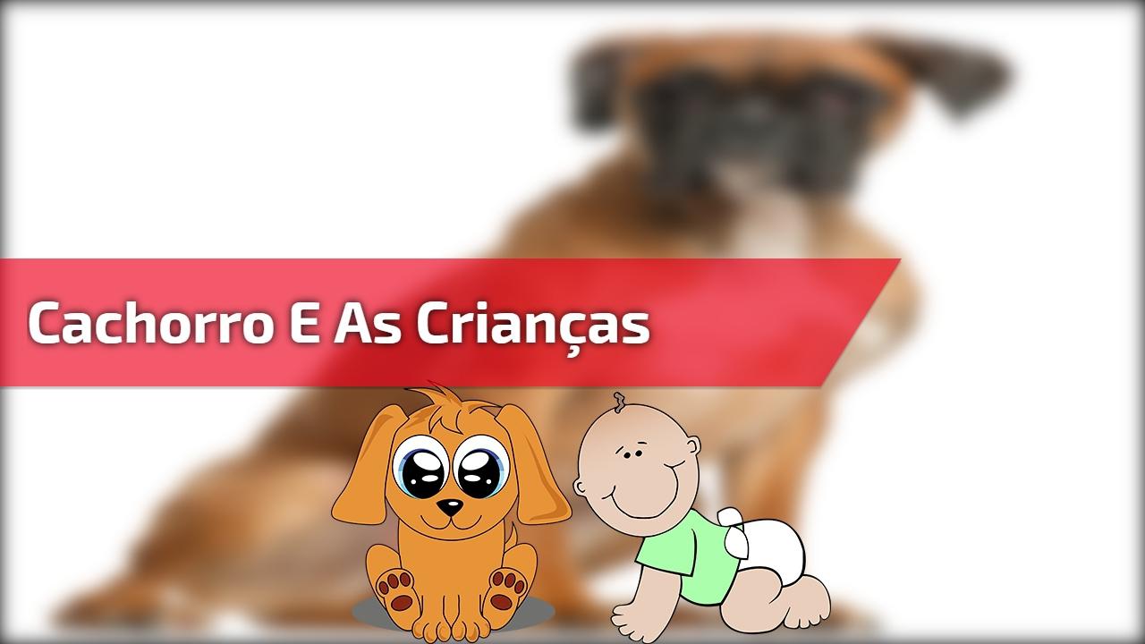 Cachorro e as crianças