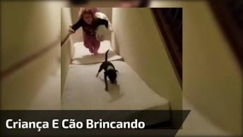 Cachorro Brincando De Escorregar Com As Crianças, Confira!