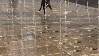Cachorro Brincando Em Fonte D'Água, Olha A Felicidade Da Criatura!