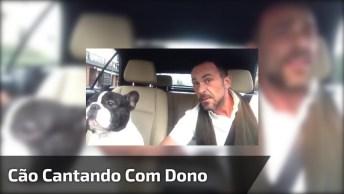 Cachorro Canta Com Seu Dono No Carro, É O Vídeo Mais Fofo Verá Hoje!