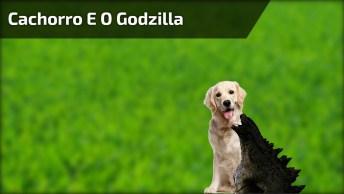 Cachorro Com Medo De Godzilla De Brinquedo, Kkk! Muito Engraçado!