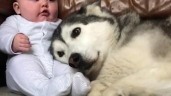 Cachorro Deitando No Colo Do Bebê, Tem Colo Mais Fofinho Que Esse?