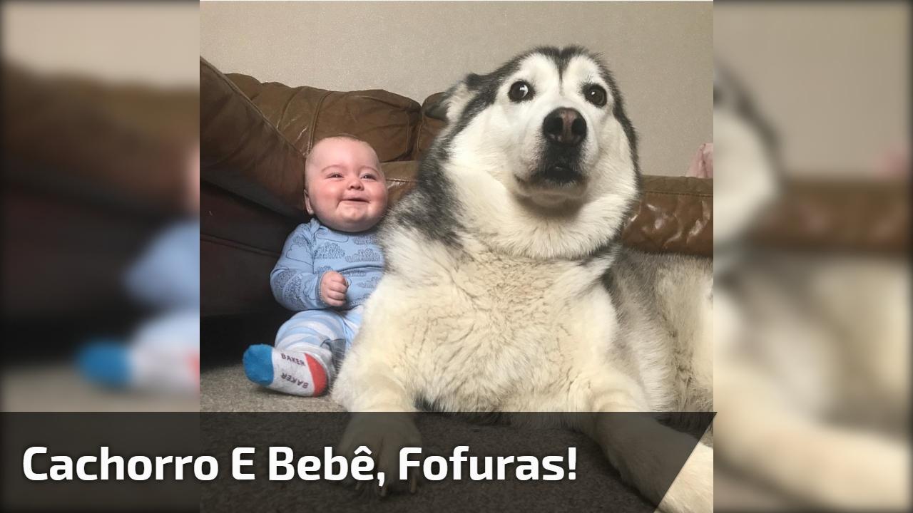 Cachorro e bebê, uma amizade linda e adorável, que lindo!