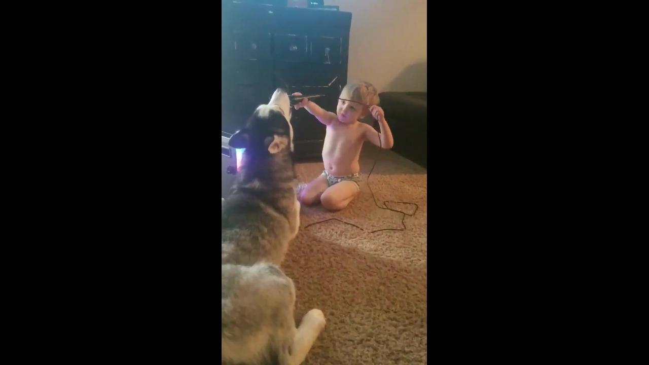 Cachorro e criança uivando no microfone