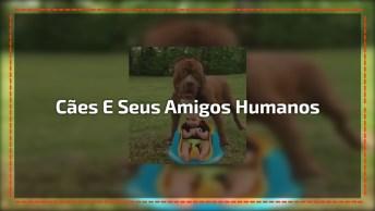 Cachorro E Seus Melhores Amigos Humanos, Veja O Que Eles Aprontam Juntos!