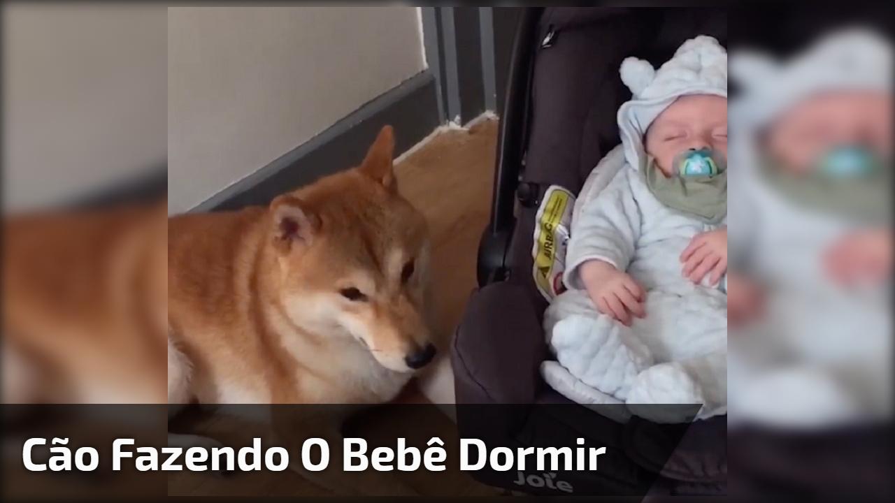 Cão fazendo o bebê dormir