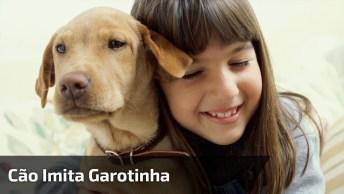 Cachorro Imitando Garotinha, Olha Só Que Coisa Mais Fofa Estes Dois!