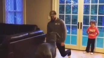 Cachorro Imitando Movimentos Do Humano, Ele É Muito Engraçado, Confira!
