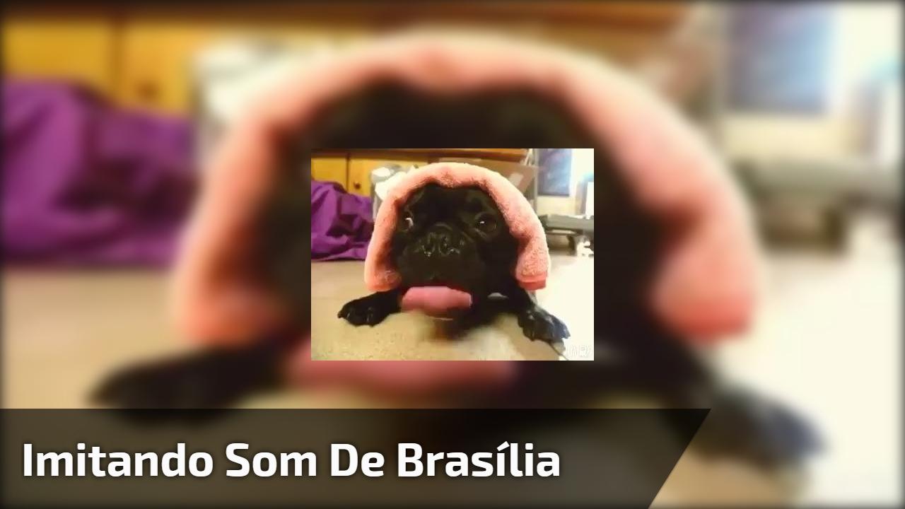 Imitando som de Brasília