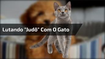 Cachorro Lutando 'Judô' Com O Gato, Que Golpe De Mestre Hein!