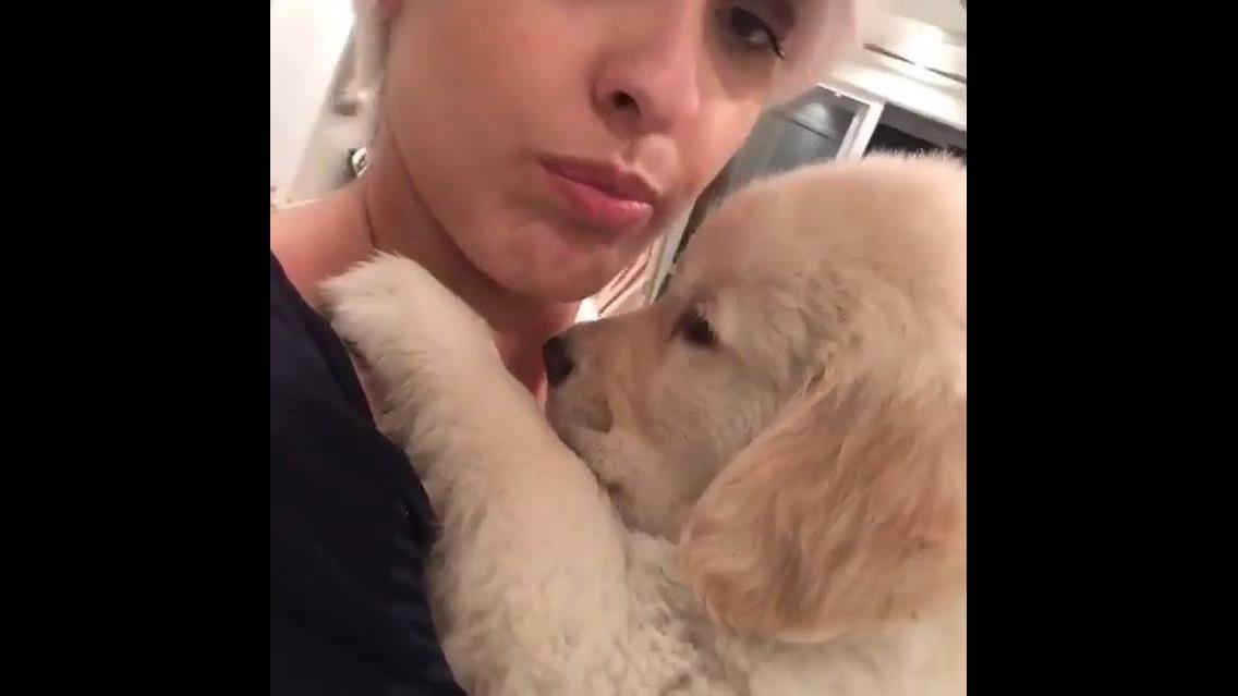 Cachorro matando a saudade da mamãe