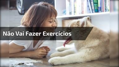 Cachorro Não Deixa Sua Dona Fazer Exercícios, Olha Só Que Engraçado!