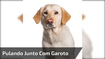 Cachorro Pulando Junto Com Garoto, Olha Só O Que Acontece!