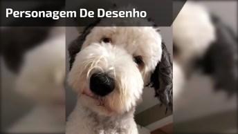 Cachorro Que Se Parece Com Personagem De Desenho, Quando Apertar O Play Saberá!