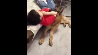 Cachorro Vê Que Humana Esta Caindo Da Cama, E Vai Ajudá-La!