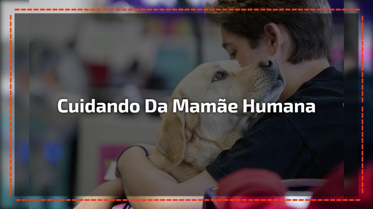 Cuidando da mamãe humana
