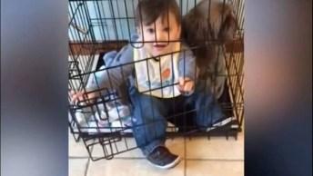 Cachorros E Bebês Uma Combinação E Muitas Risadas E Amor, Que Fofos!