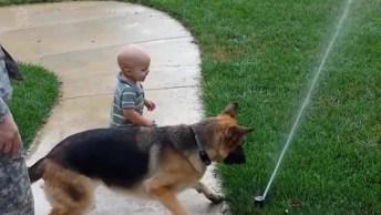 Cachorros E Bebês, Uma Dupla Que Não Tem Como Não Amar!