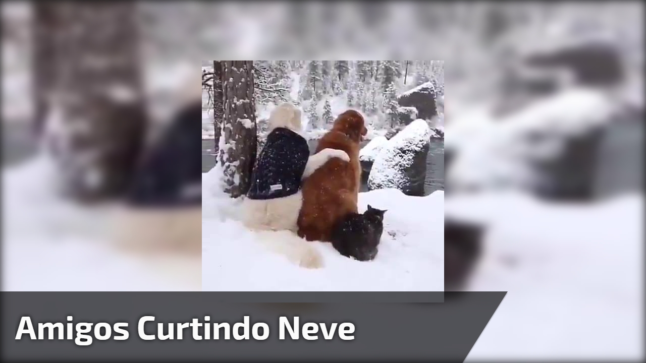 Amigos curtindo neve