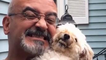 Cachorros Sorrindo Para Câmera, Como Essa Galerinha É Espertinha!