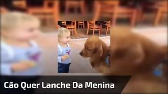 Cão Faz De Tudo Para Ganhar Um Pedacinho Do Lanche Da Criança!