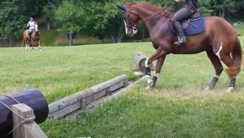 Cavalo Dramático, Olha Só Como Ele Faz Para Pular Este Obstaculo, Kkk!